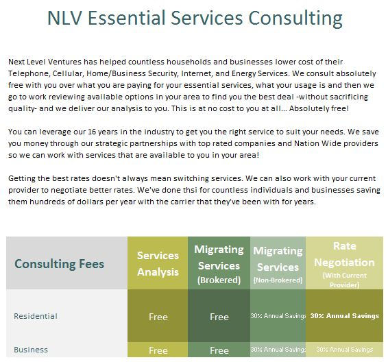 NLV Consulting Fees